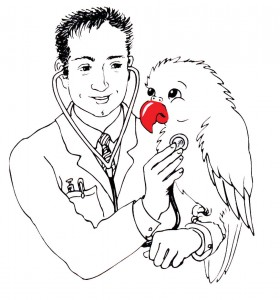 A doctor for my parrot