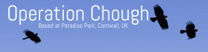 Operation Chough Website