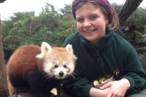 Keepr Louise with Red Panda Cub Tiffany
