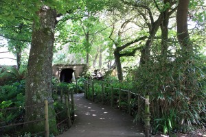 Parrot Jungle Paradise Park
