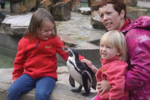 Penguin Photocall Encounter