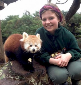 Keeper Louise Hobin with Red Panda