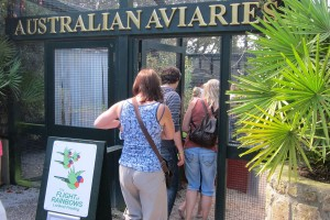 Entrance to Aviaries for Flight of the Rainbows