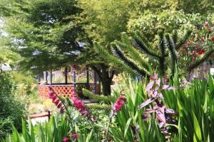 Looking over to the Gazebo garden