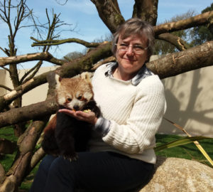 Deborah Carpenter Red Panda Experience