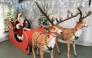 Santa and reindeer Paradise Park