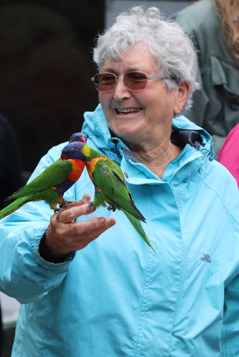 Barbara at lorikeets feeding at Paradise Park