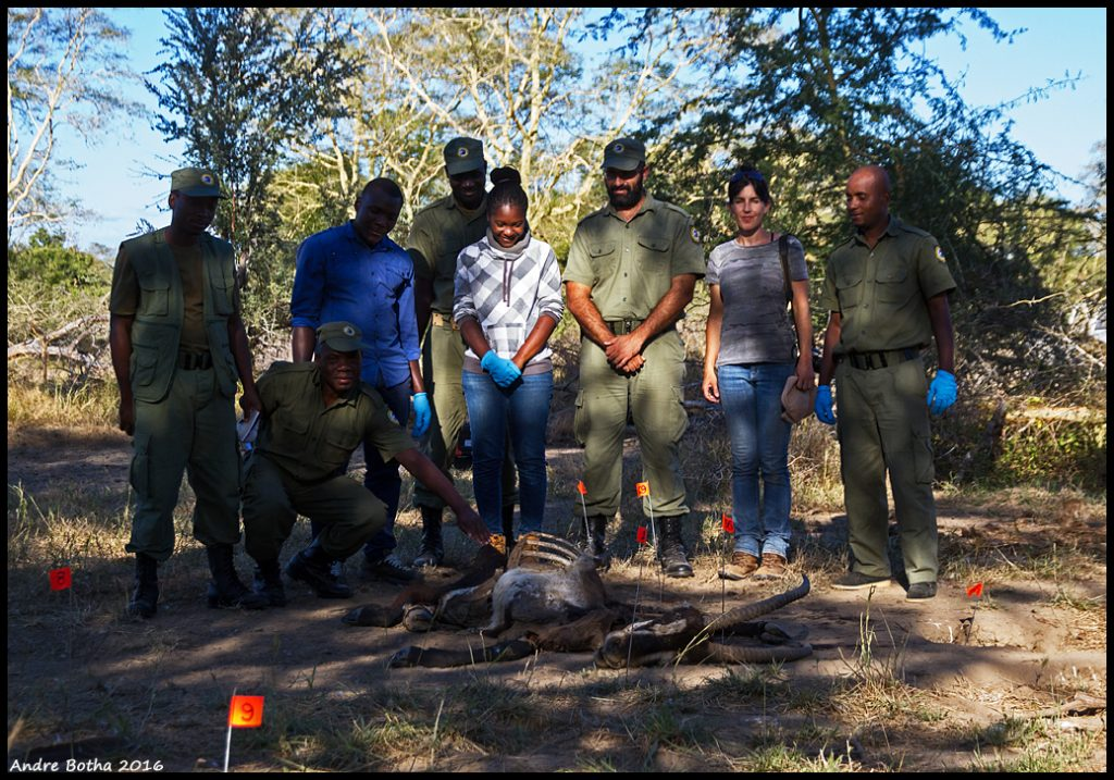 Poisoning Intervention - Scene Investigation_Gorongosa National Park, Mozambique_1.7.2016.2