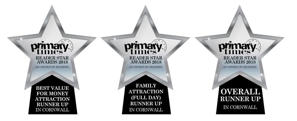 Primary Times Awards 2018