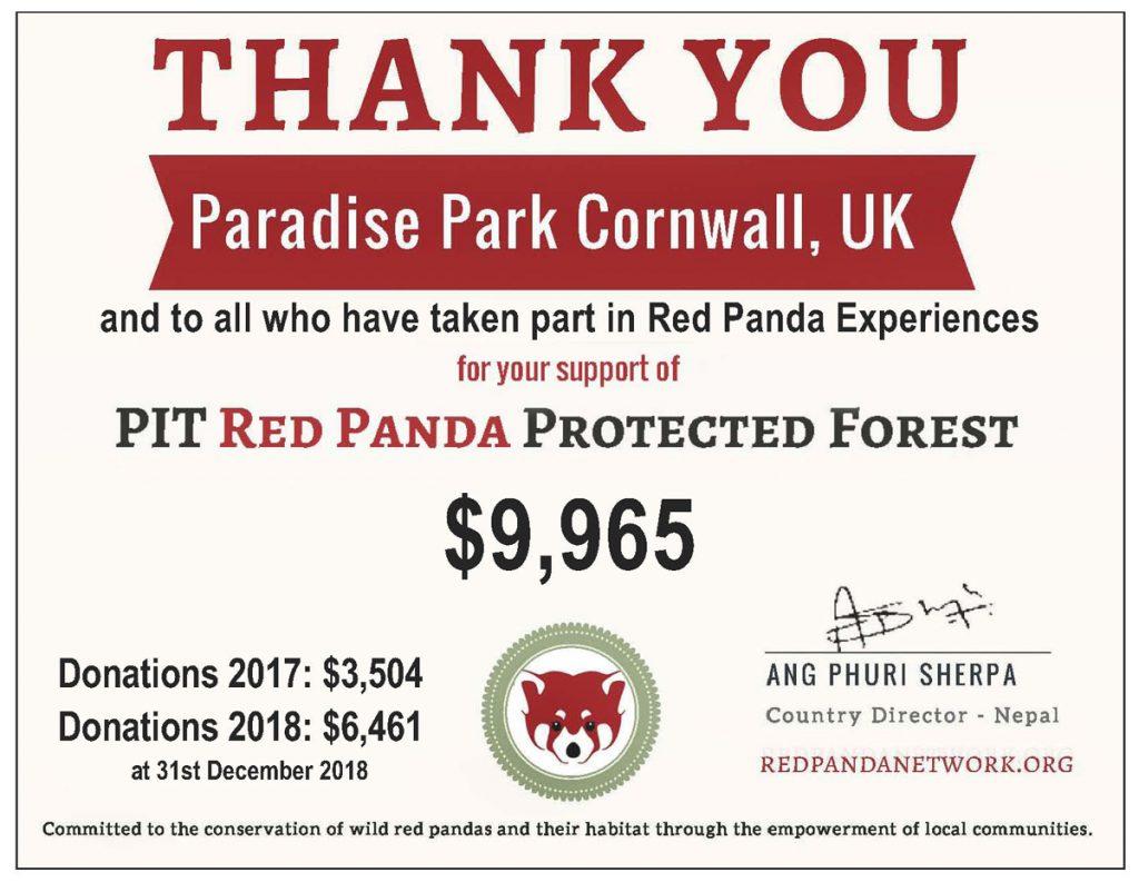 Red Panda Experience certificate