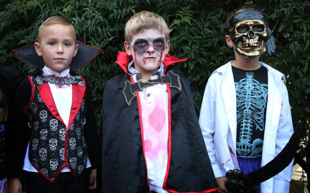 Halloween Disco at Paradise Park Hayle Cornwall
