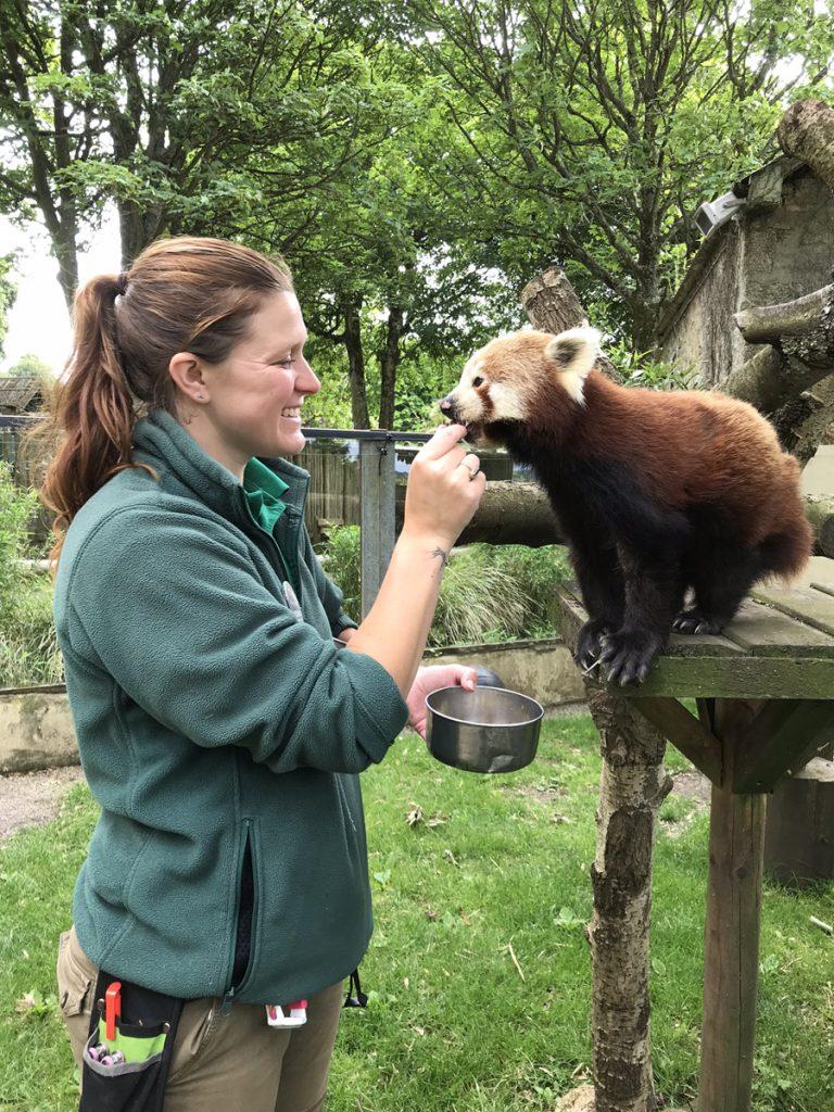 Keeper Donna Sinclair and Red Panda Lang Za