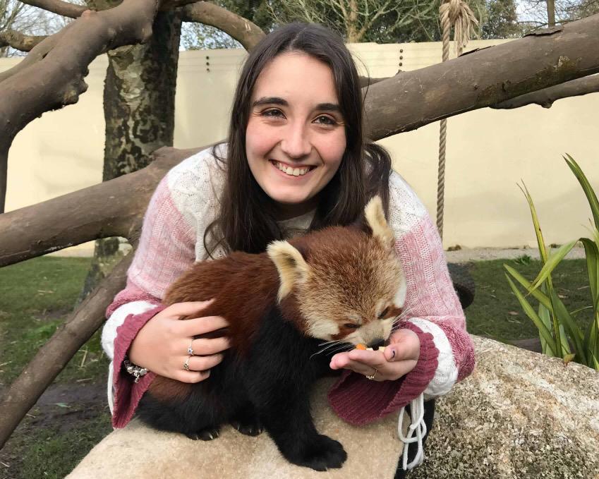 Lauren Calway Red Panda Experience