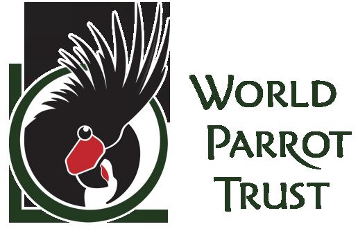 WPT logo 2019