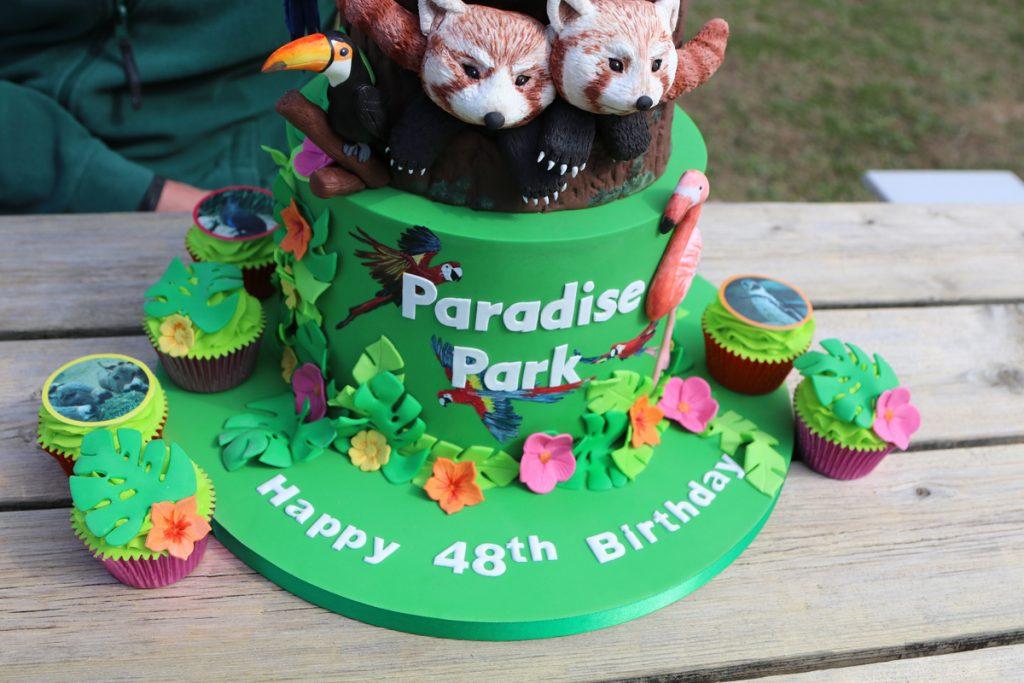 48th Birthday The Willow Cakery cake red pandas